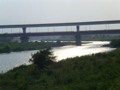 2010_215