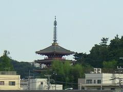 2010_097
