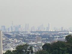 2010_281