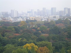 2010_342