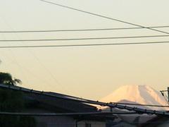 2010_397