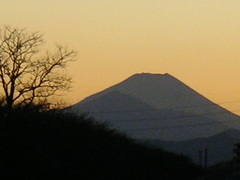 2010_406_2